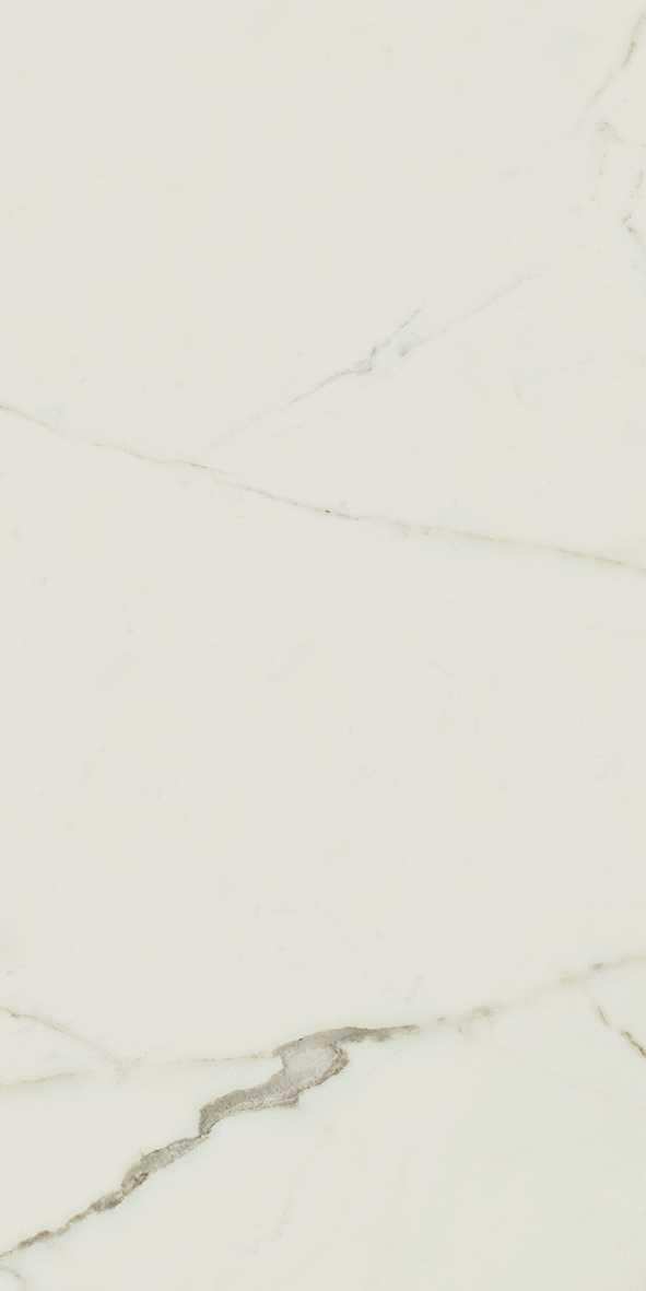 302944_Supreme Calacatta 30×60 Rett