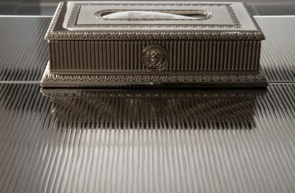 Versace ceramics Gold 25×75 rivestimento decoro riga platino interno_1