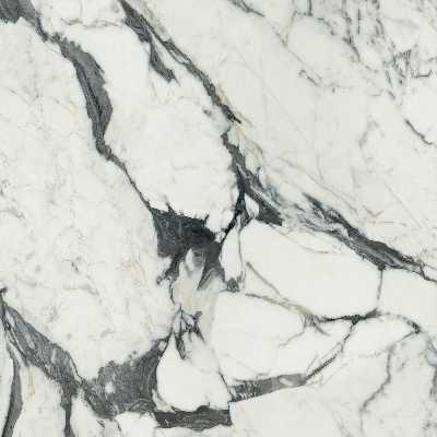 Rex Florim Les bijoux de Rex 60×60 Calacatta altissimo blanc